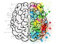 Como o neuromarketing pode ajudar sua autoescola a vender mais